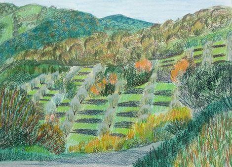 Joseph M Dunn, Tuscan Olive groove on ArtStack #joseph-m-dunn #art