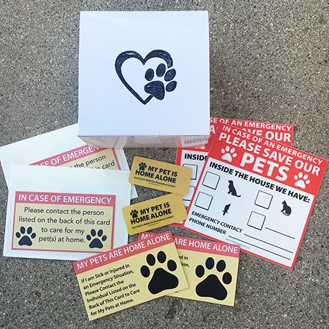 Emergency Pet Safety Kit Kitten Care Pet Care Buy A Kitten