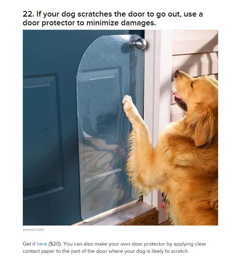 Doggy Door Cover My Fur Baby Pinterest Dog Doggies And Fur Babies