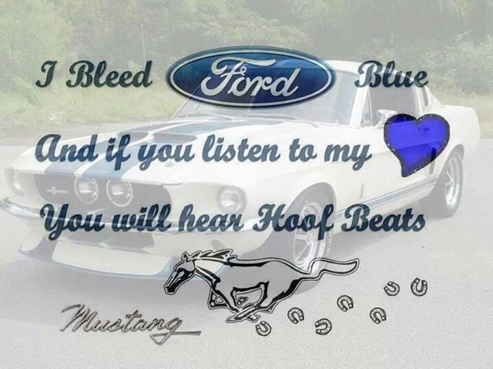 Pony Up D Mustang Girl Mustang Quotes Ford Girl