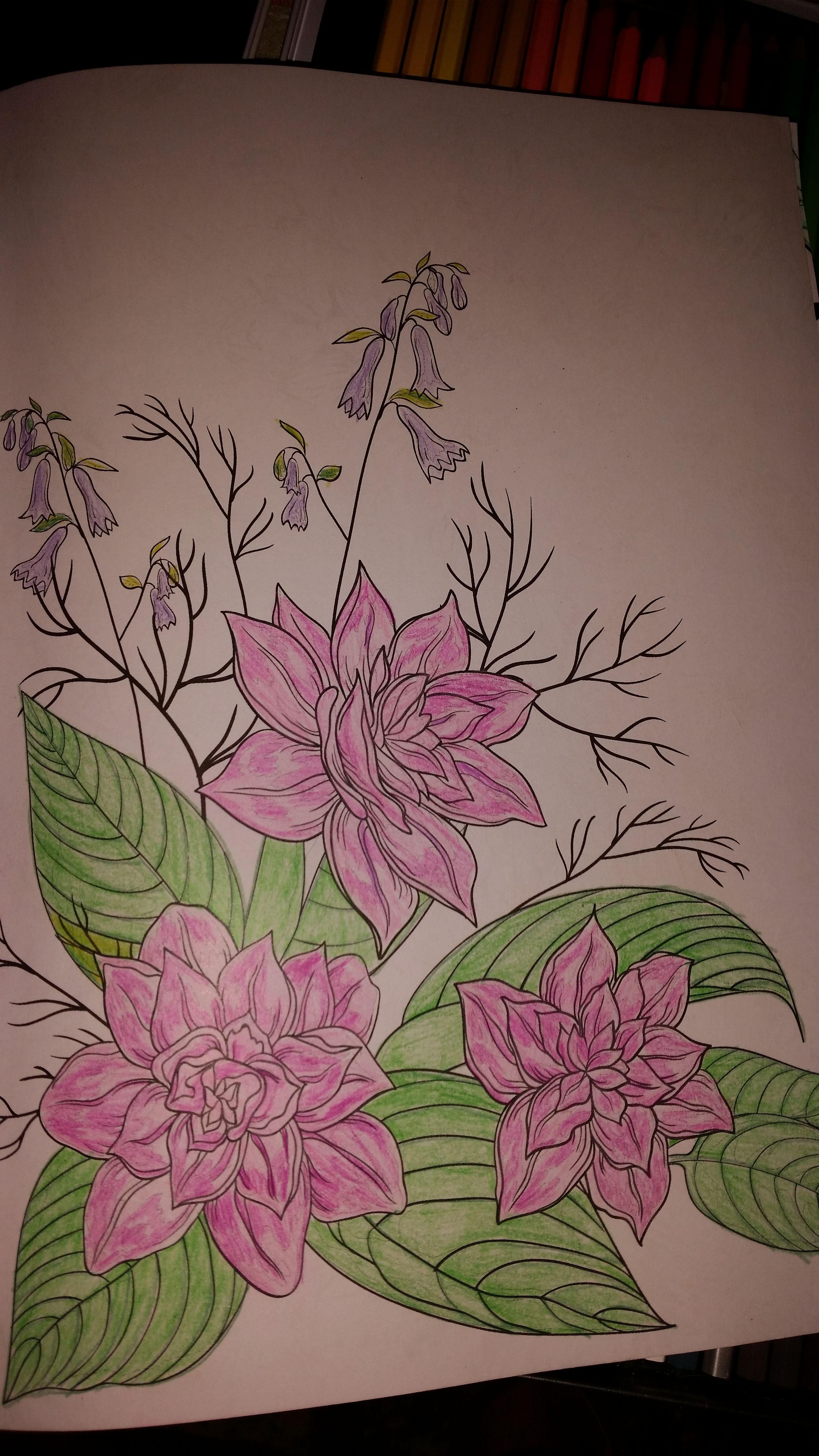 chantal s bloemen kleurplaat bloem kleurplaten