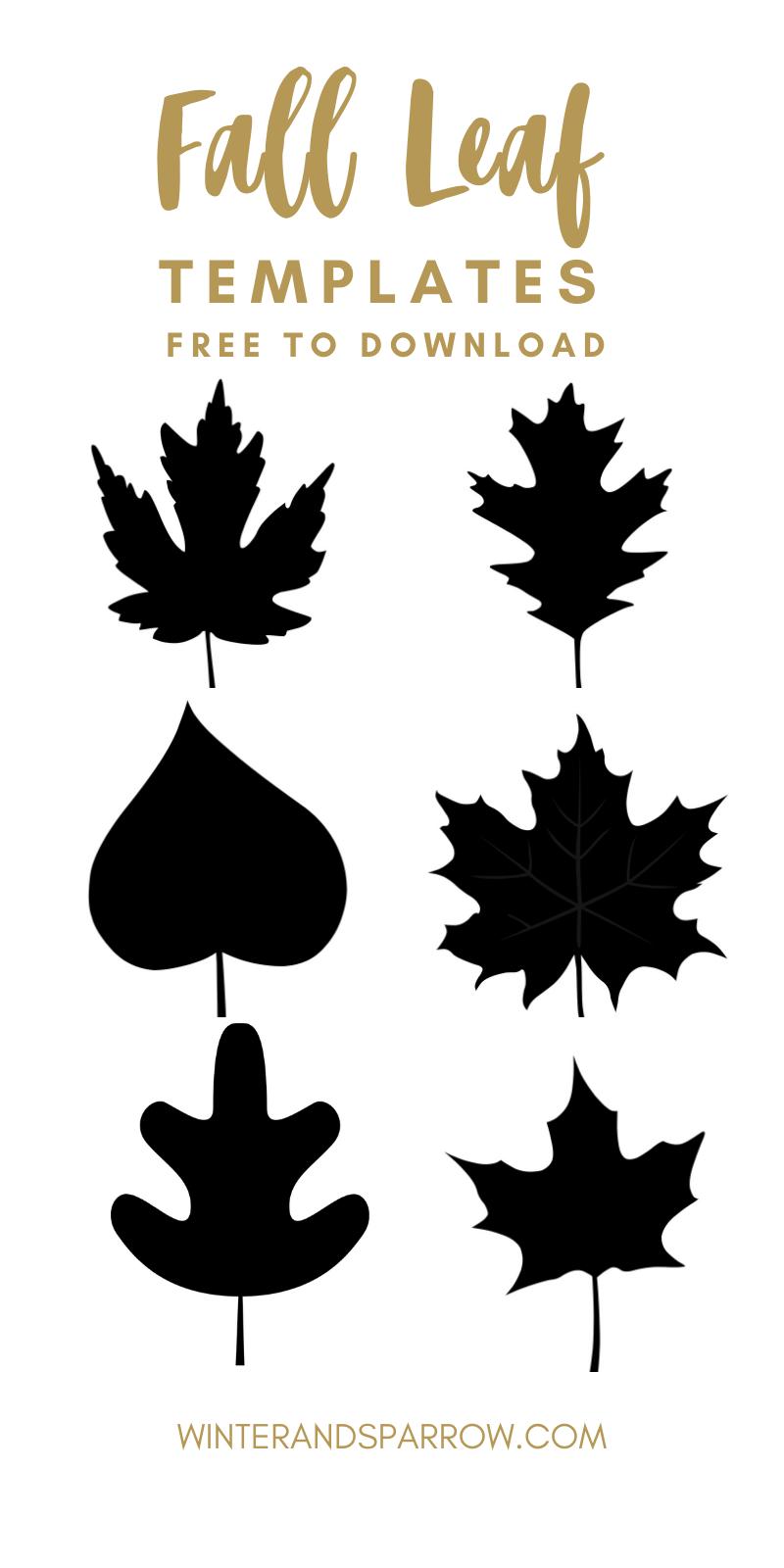 6 Free Fall Leaf Templates | Fall leaf template, Leaf ...