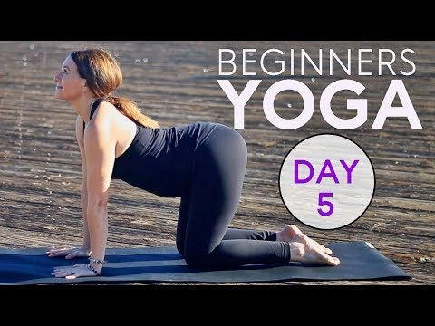 beginners yoga workout 15 min core strength day 5