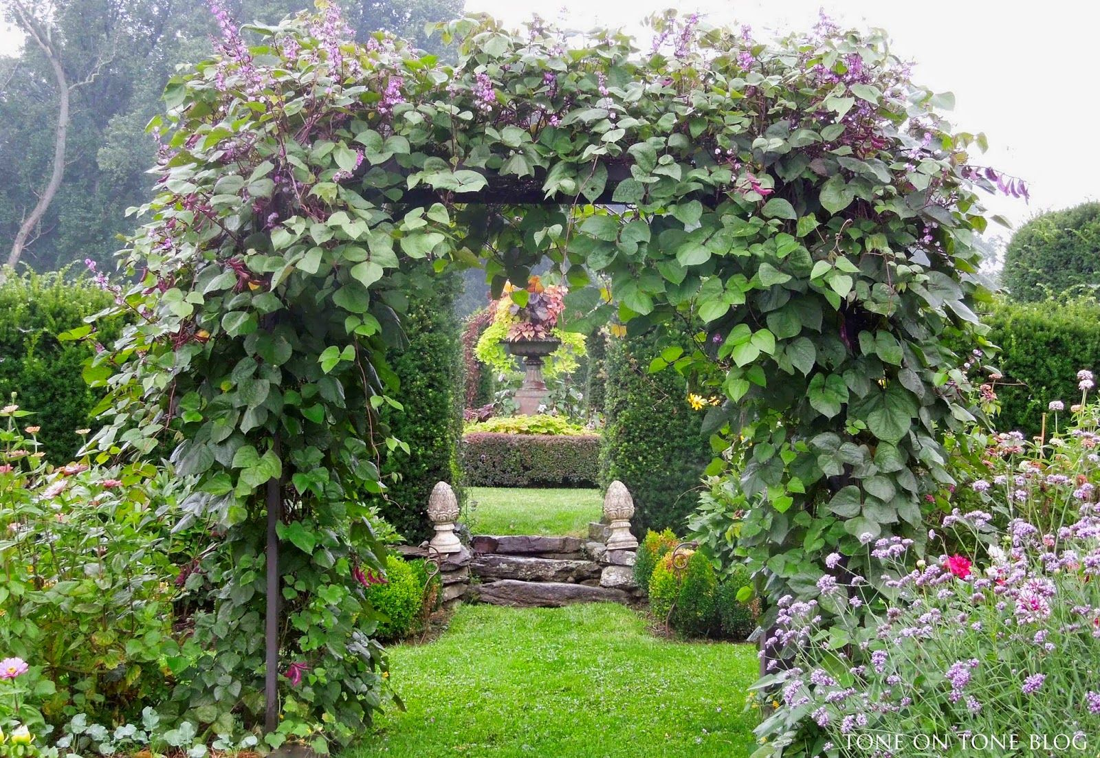 Tone on Tone: Halcyon Moments in the Garden