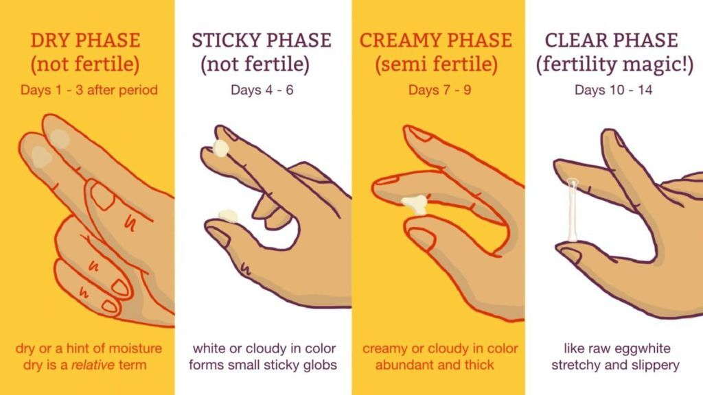 Ovulation Tracking with PCOS | help body | Cervical mucus chart