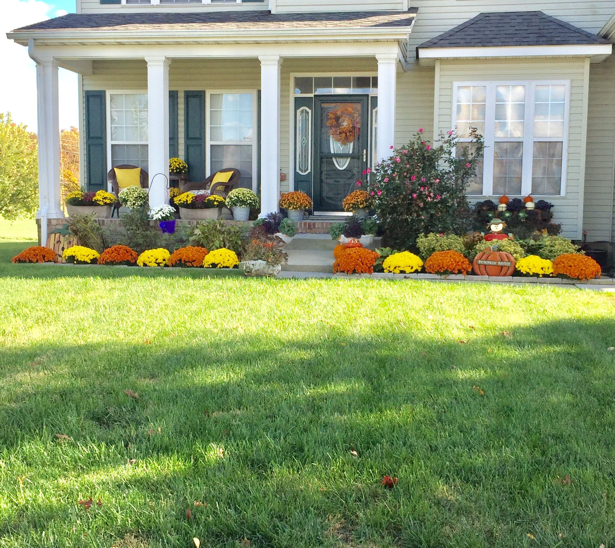 Fall Front Yard Mums, Pumpkins And Ornamental Cabbage