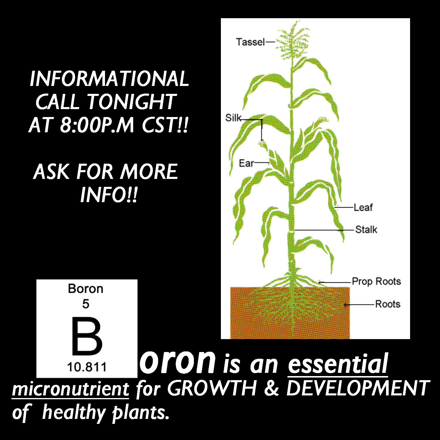 Boron powercall live at 800pm cst join us email