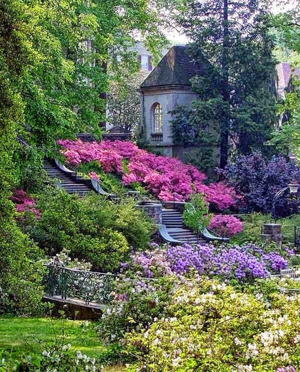 Jardín Queso Pinterest Jardín, Jardines y Paisajes - paisaje jardin