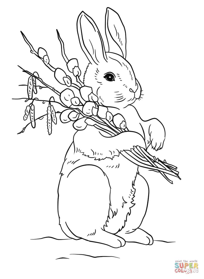 Free printable Rabbit coloring page  Supercoloring.com Springtime