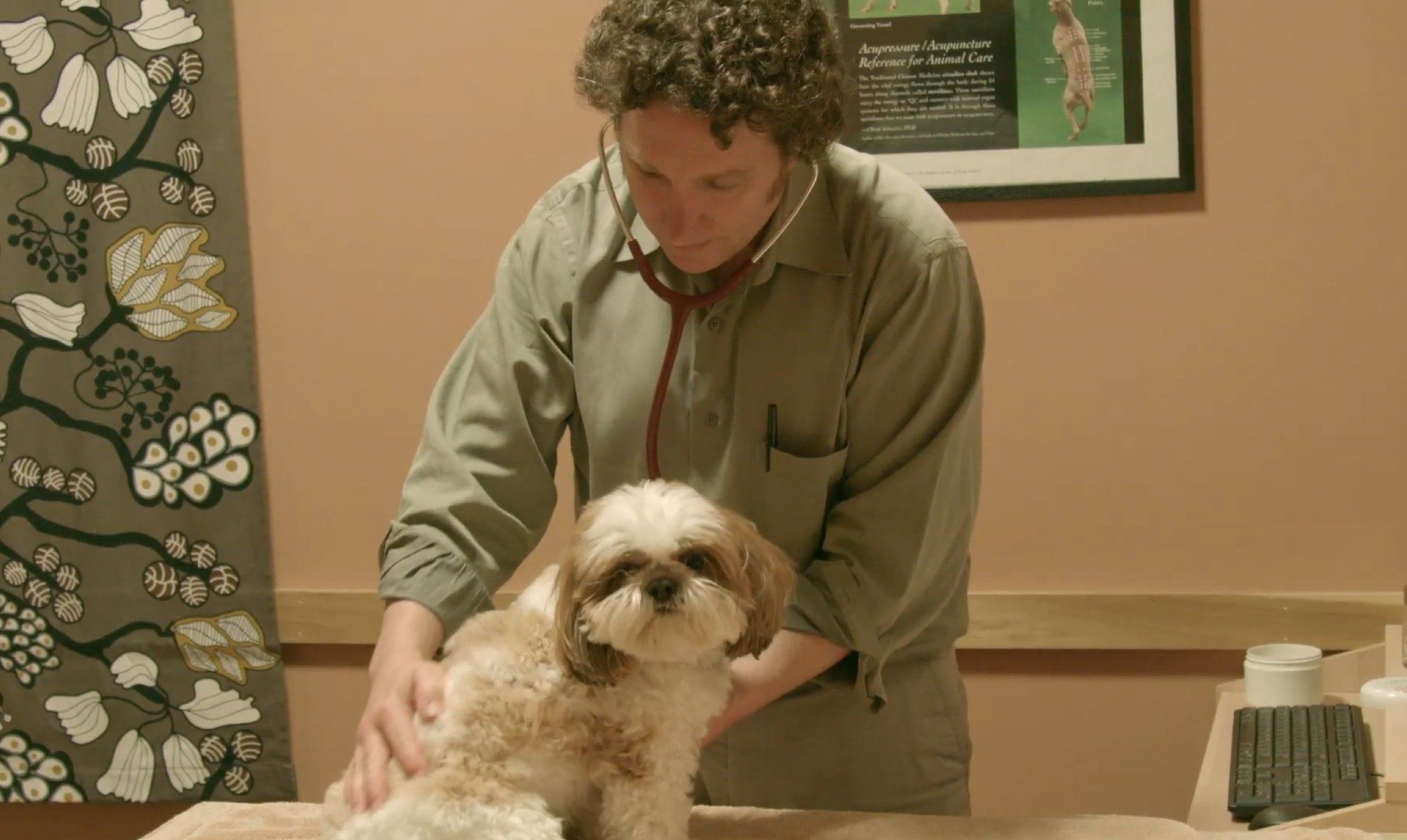 Ultimate Pet Nutrition Help Improve Your Dog S Health Animal Nutrition Dog Health Holistic Pet Care