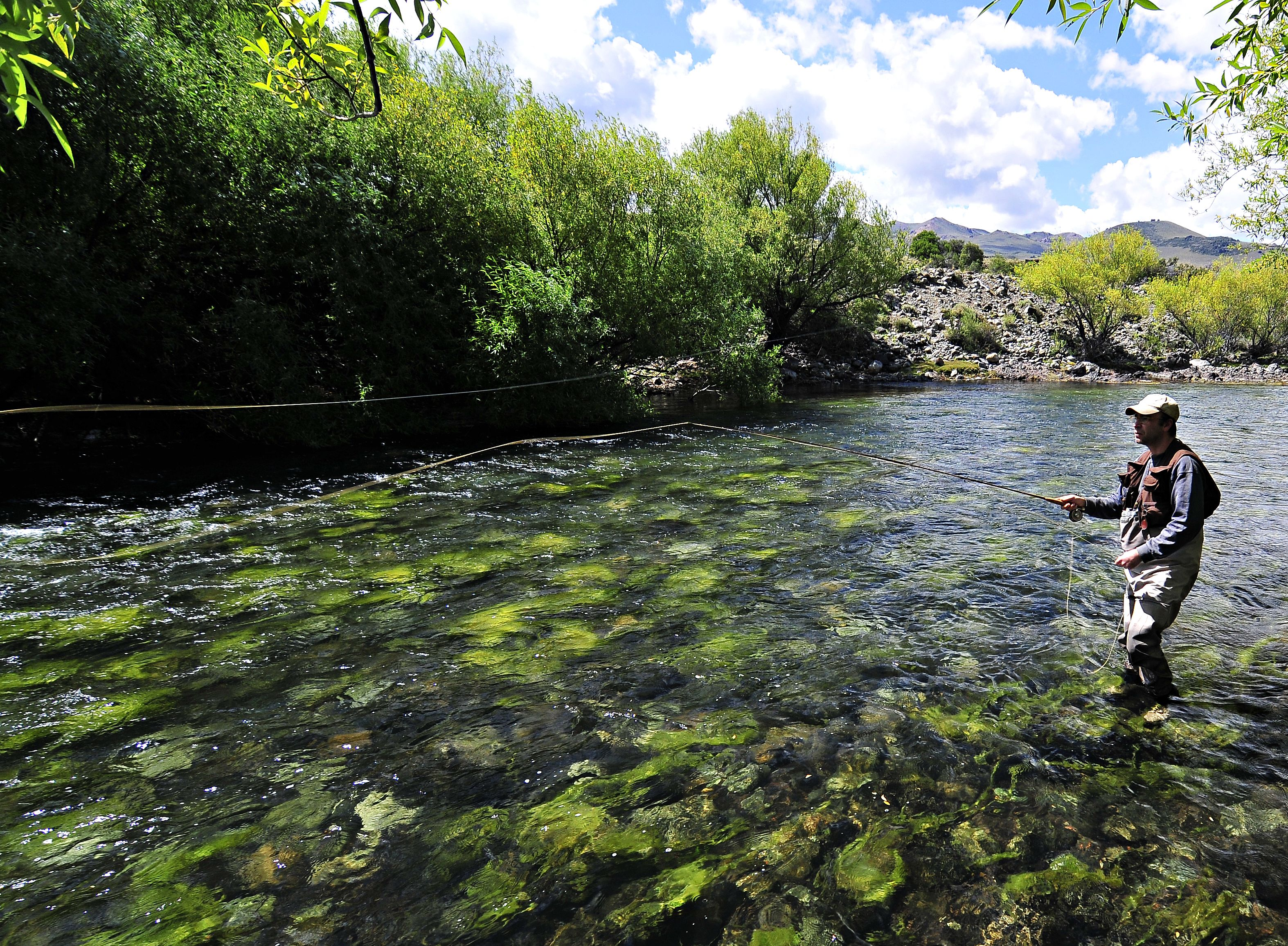 Trout Fly Fishing Wallpaper Fly Fishing Pinterest Trout and