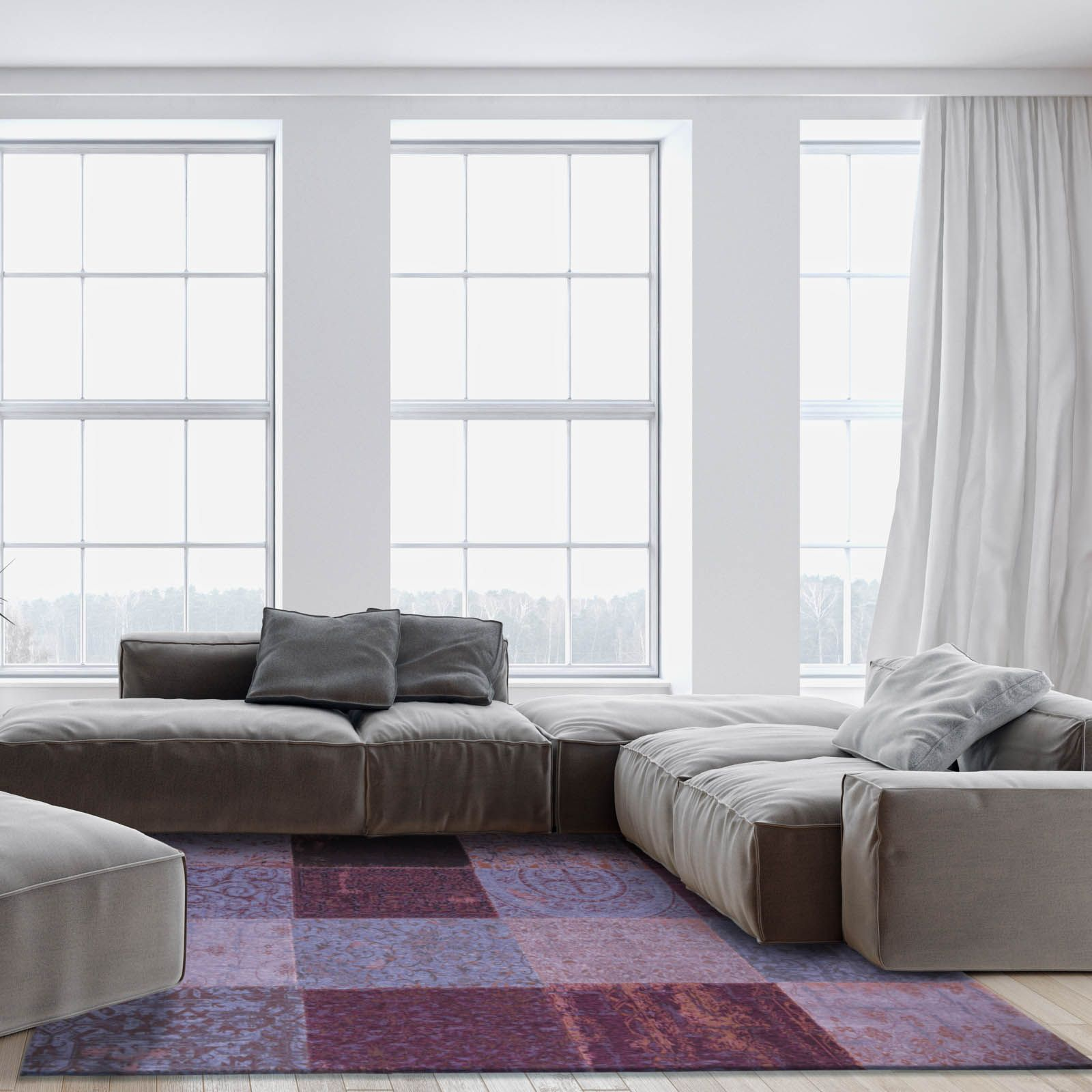 This accent rug and furniture; matching side sofas and floor length ...