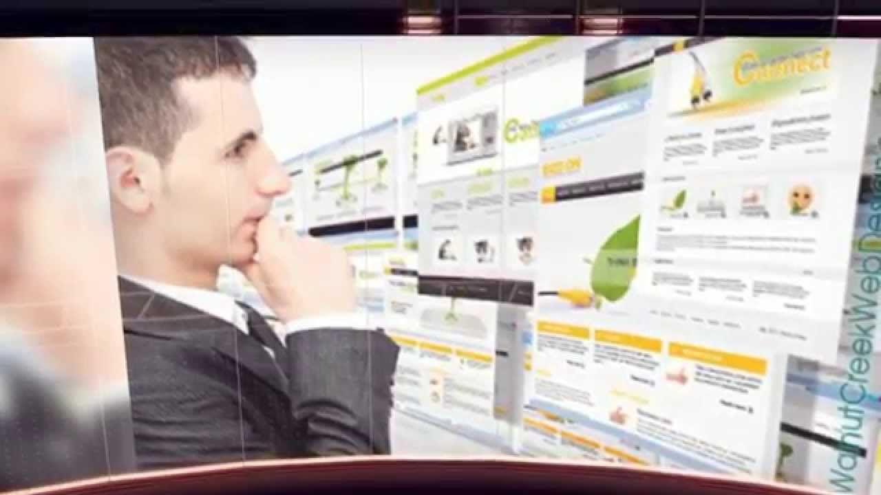 Web designer in walnut creek contact 9253095272 web