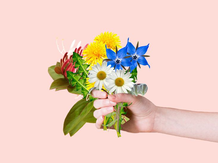 11 Edible Flowers With Potential Health Benefits In 2019