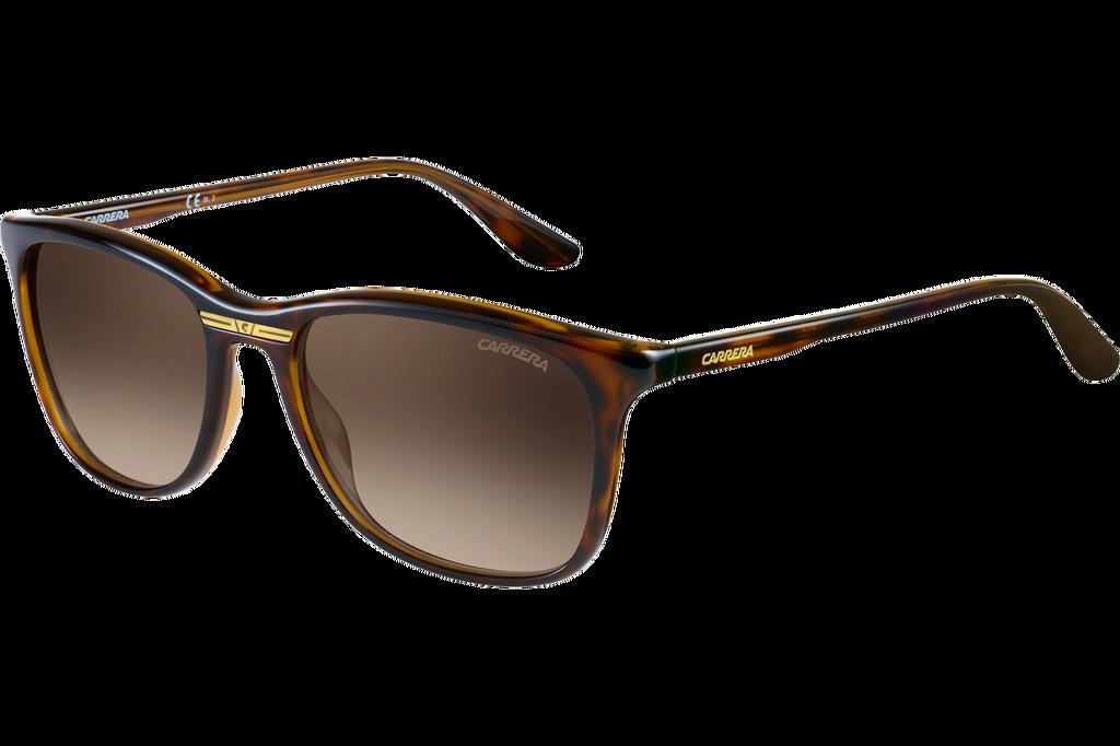 1df70d9f1d CARRERA 6013 S-Havana  sunglasses  carreraworld Carrera Sunglasses