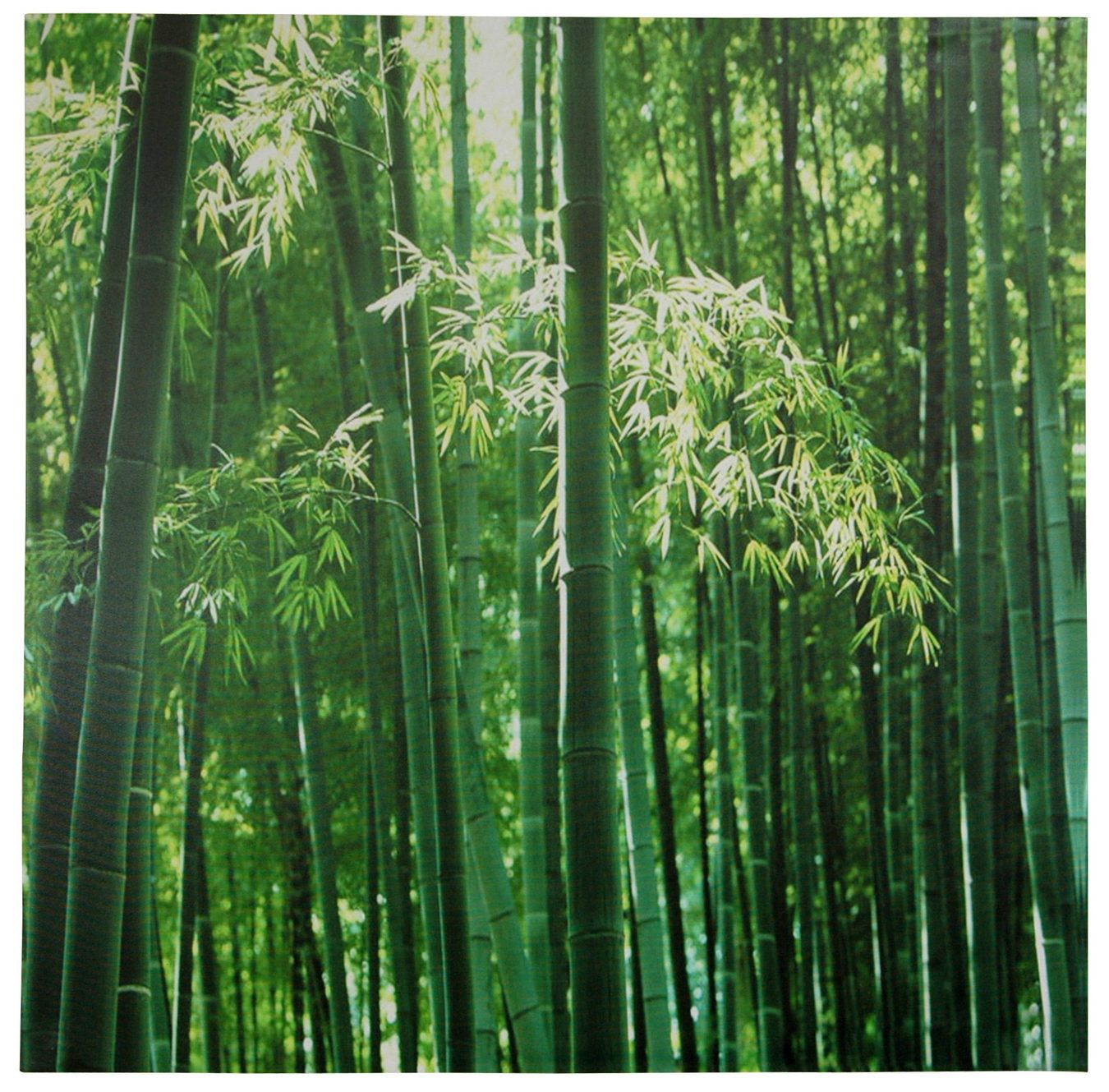 Bamboo Canvas Wall Art Orientalfurniture Com Gems Stones All