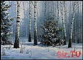 Künstler Vladimir Anischenko – Kunst – …,  #Anischenko #Kunst #Künstler #Vladimir #Winterbi…