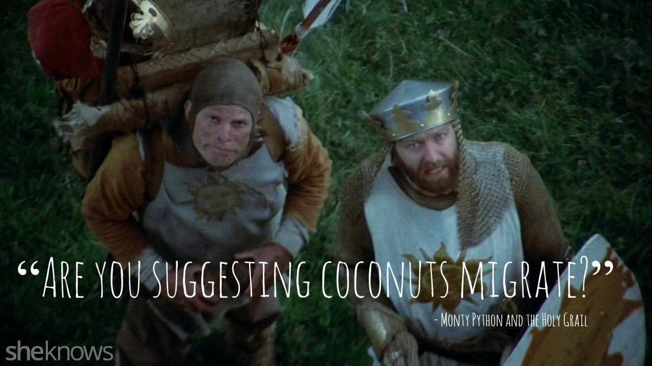 Best Monty Python Quotes 15 Best quotes from
