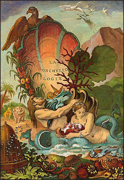 Illustration by Antoine-Joseph Dezallier d'Argenville (1680–1765), from his La Conchyliologie, ou Histoire Naturelle des Coquilles de Mer, d'Eau Douce, Terrestres et Fossiles. Published in Paris, 1780
