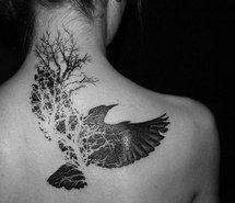 tattoo, beautiful, Tattoos, beauty, bird, white, black, girl ...