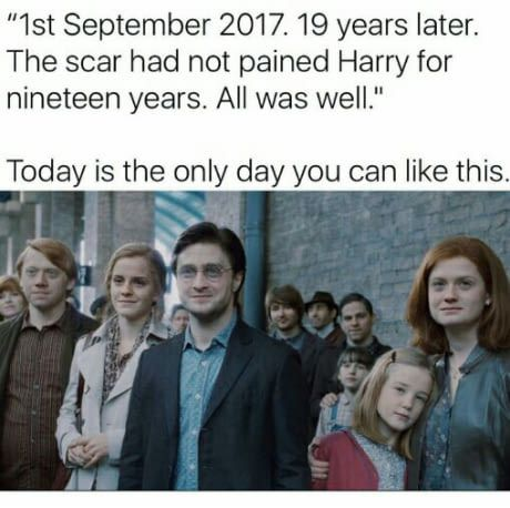 19 Years Later Daily Lol Pics Harry Potter Universal Harry Potter Obsession Harry Potter Funny