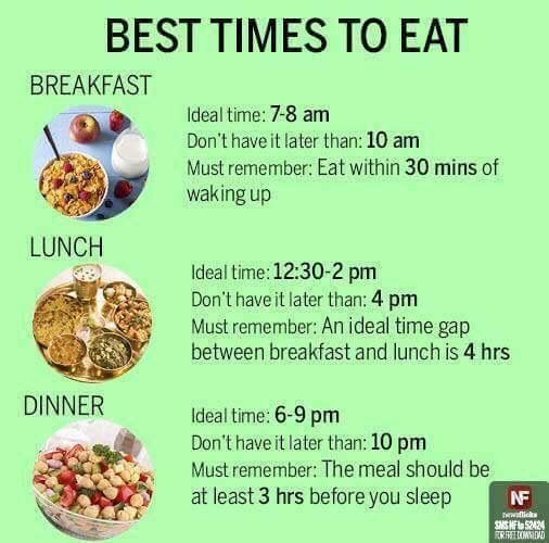 Best Time To Have Breakfast, Lunch And Dinner.
