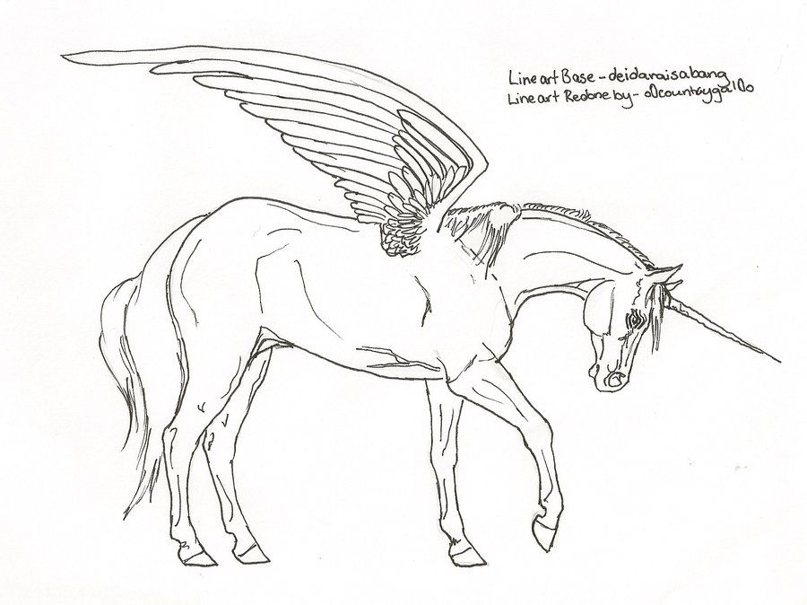 Horse Drawings To Trace Downloads Horse Drawings In