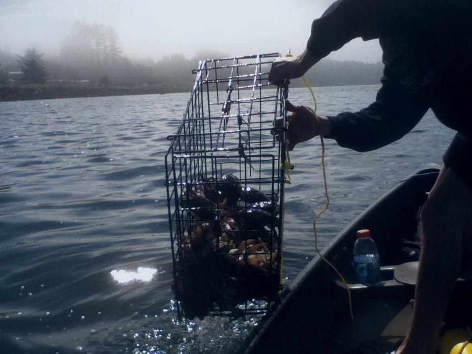 Crab fishing netarts bay my fav spot to catch and boil