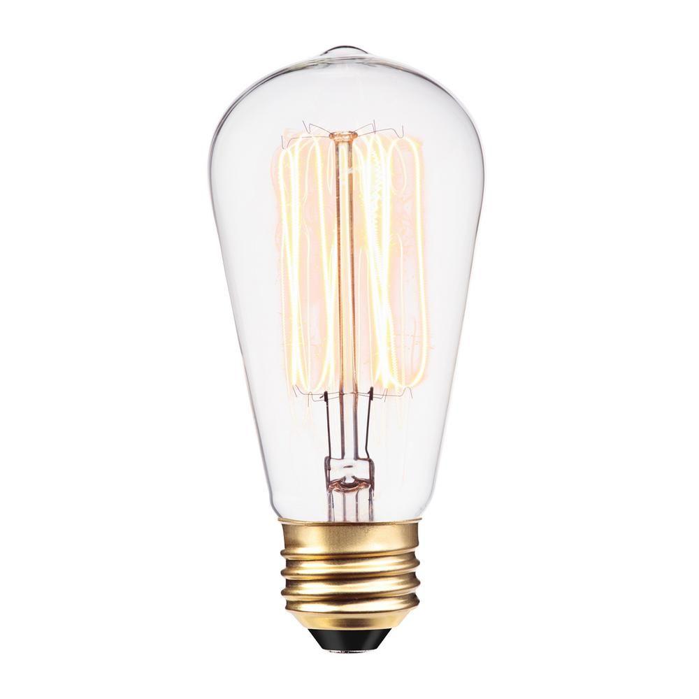 Globe Electric 60 Watt Incandescent S60 Vintage Squirrel Cage Medium Base Light Bulb 01321 The Home Depot Edison Light Bulbs Dimmable Light Bulbs Filament Bulb Lighting