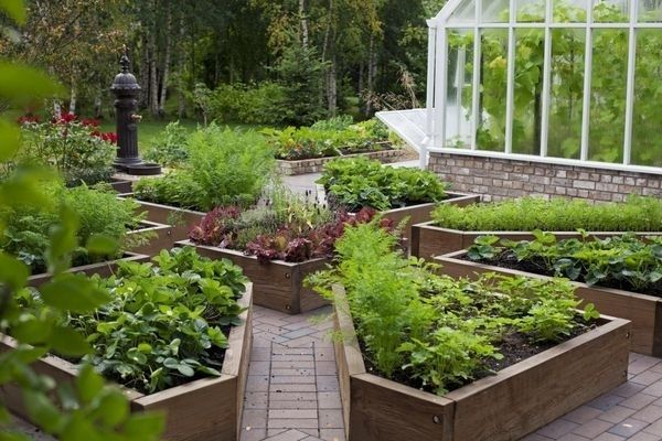 diy raised beds in the vegetable garden ideas and materials kosip magazine