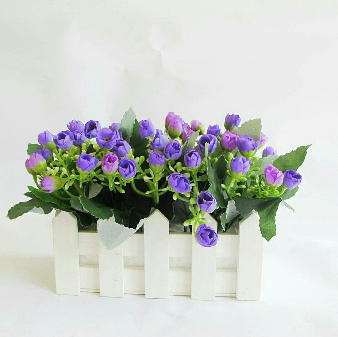 Pin Em Vas Bunga Bunga Tanaman Hias