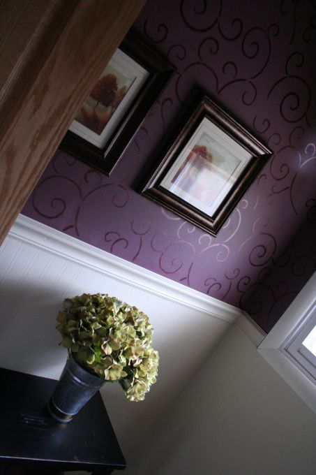 Perfect For The Girly Bathroom...the Wainscoting Would