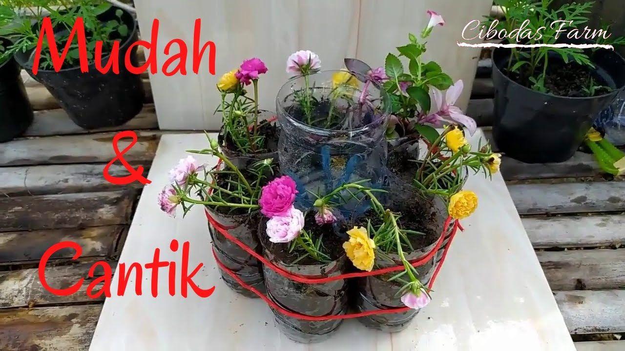 Cara Mudah Membuat Pot Bunga Dari Botol Bekas Air Mineral Pot Bunga Bunga Mineral
