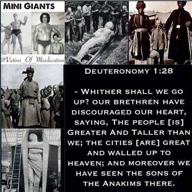 descendants of nephilim today - Google Search