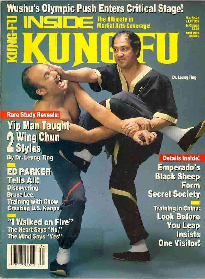 Kungfu kingdom martial arts