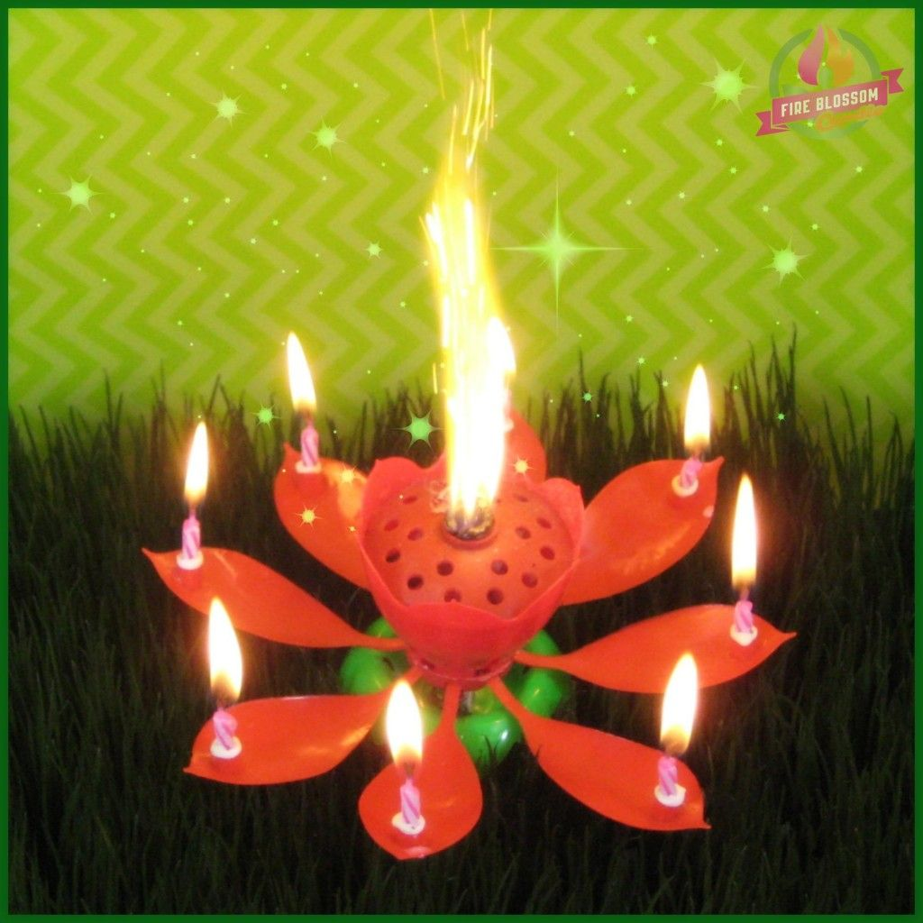 Red Birthday Candle Fire Blossom Candle Visit www