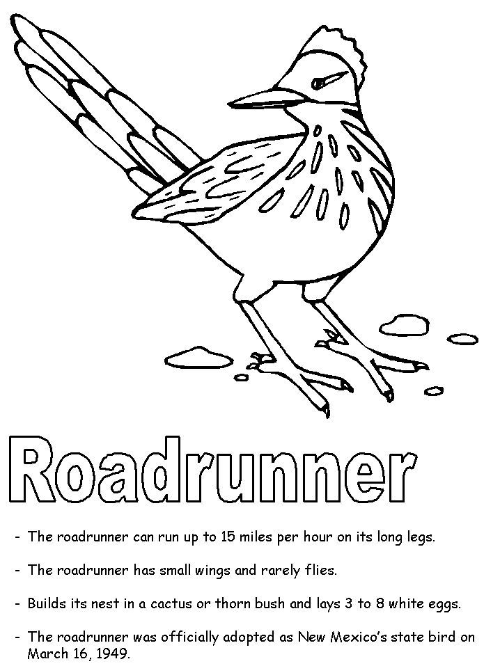 Pin By Stephen Davis On Roadrunners Flag Coloring Pages Tree