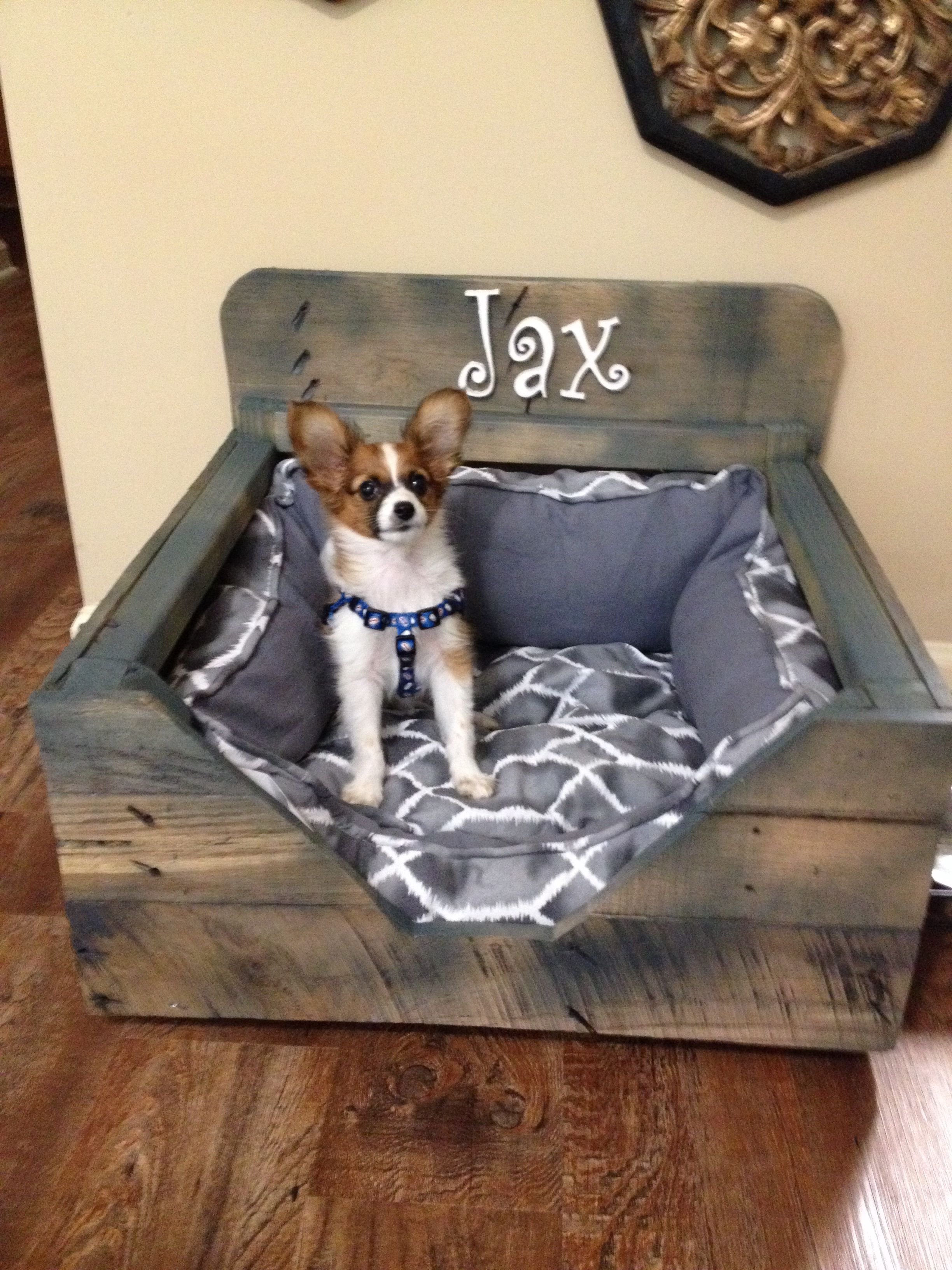 Dog bed made out of wood pallet! Jax the papillon loves his comfy grey dog…