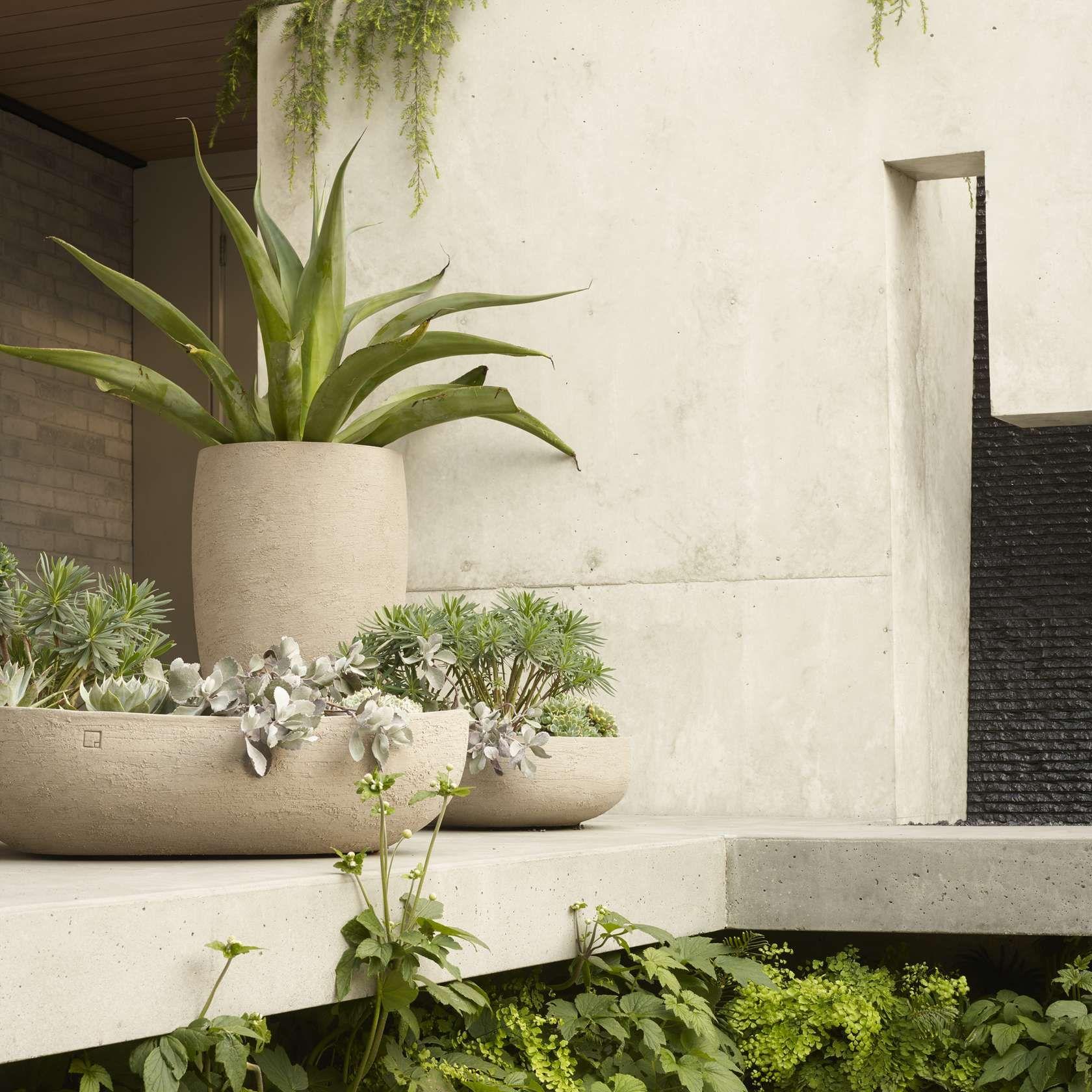 Surfacedesign Inc Urban Garden Design Urban Garden Garden