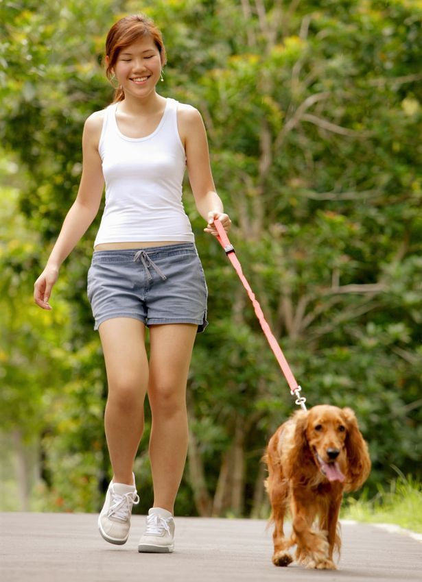 Woman Walking Dog | walking for health and fitness | Walking