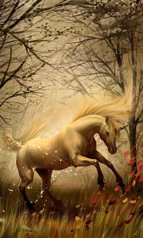 Fantasy Landscape And Unicorn Android Wallpapers Htc T Mobile G2 G1 Wallpapers Free Download Unicorn Fantasy Unicorn Wallpaper Unicorn Pictures
