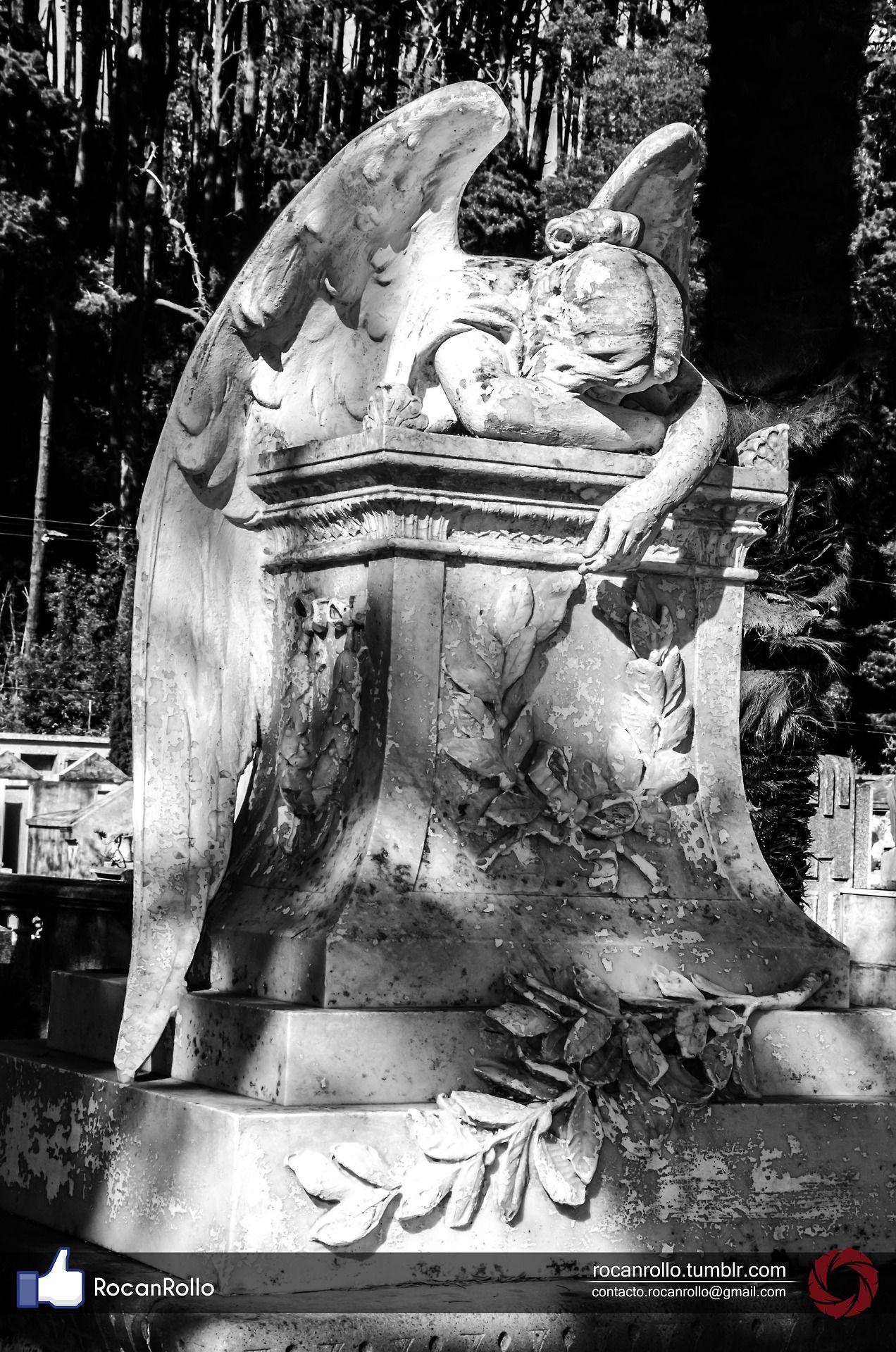 #fotografia #Byn #byw #moto #RocanRollo #Nikon #Cementery #cementerio #angel  rocanrollo.tumblr.com
