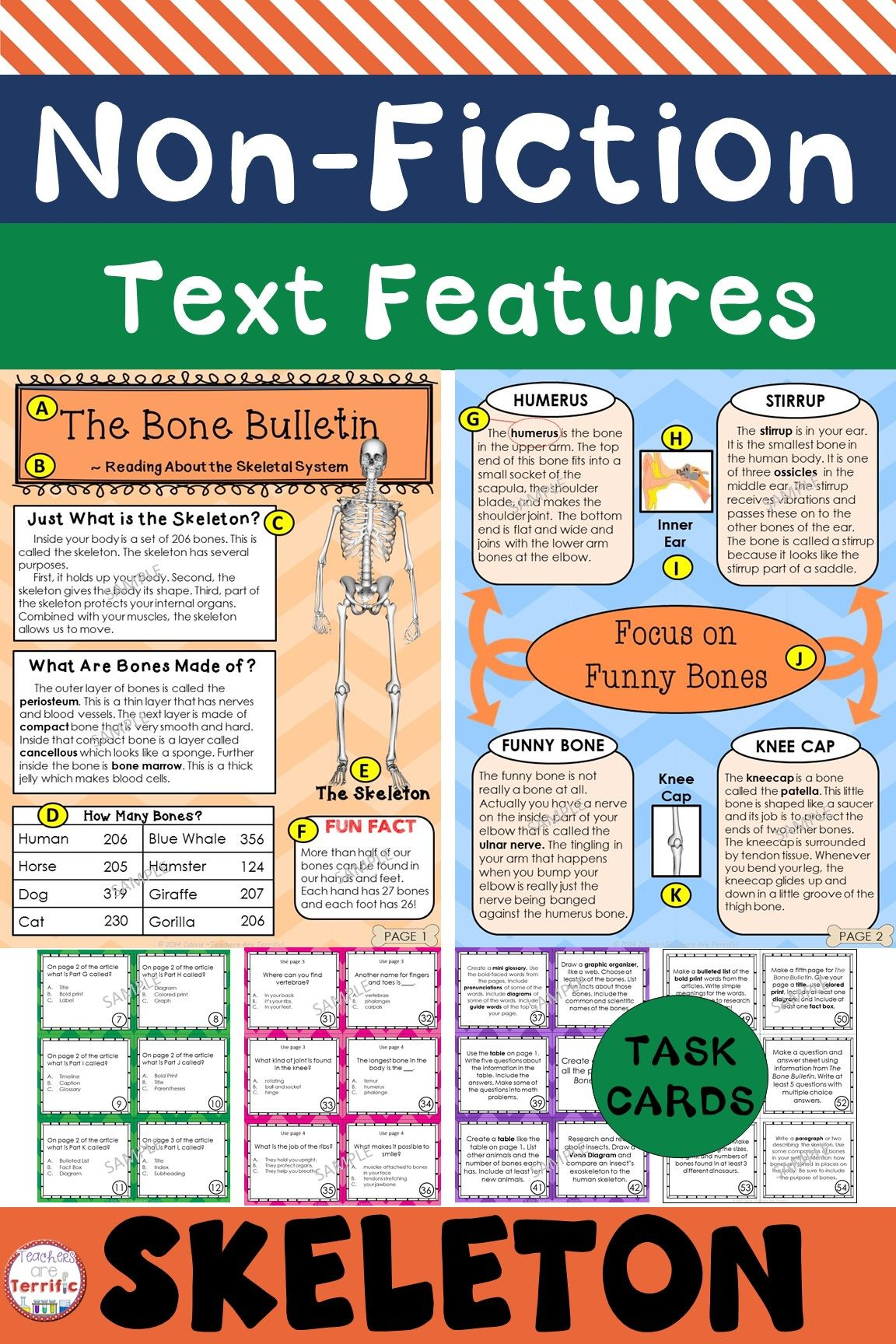 The Skeleton Non Fiction Text Features And Task Cards