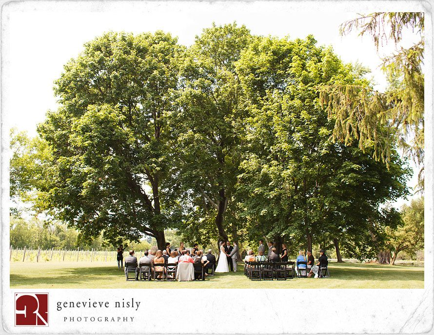 outdoor wedding ceremony sites in akron ohio%0A Outdoor ceremony under trees at Gervasi winery  Genevieve Nisly Photography