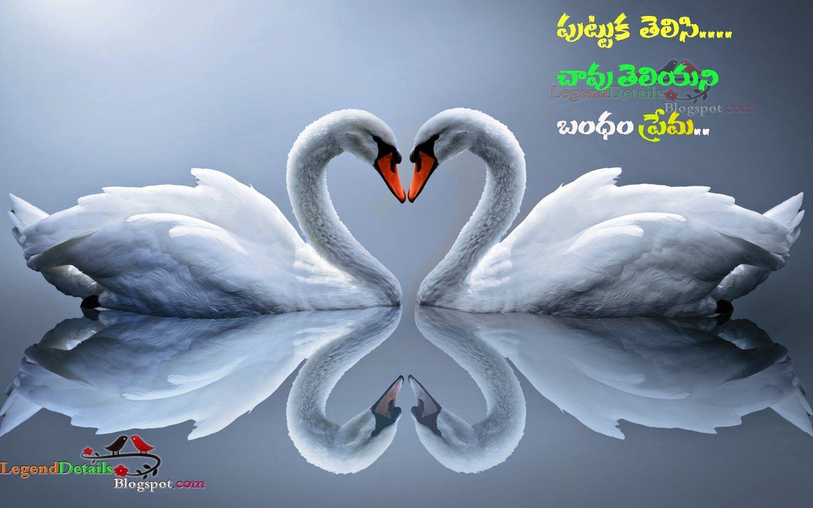 famous new telugu love quotes hd wallpapers the