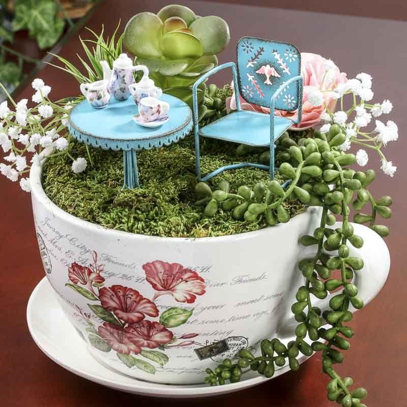 french inspired miniature tea cup garden and saucer flower planter fairy gardens pinterest. Black Bedroom Furniture Sets. Home Design Ideas