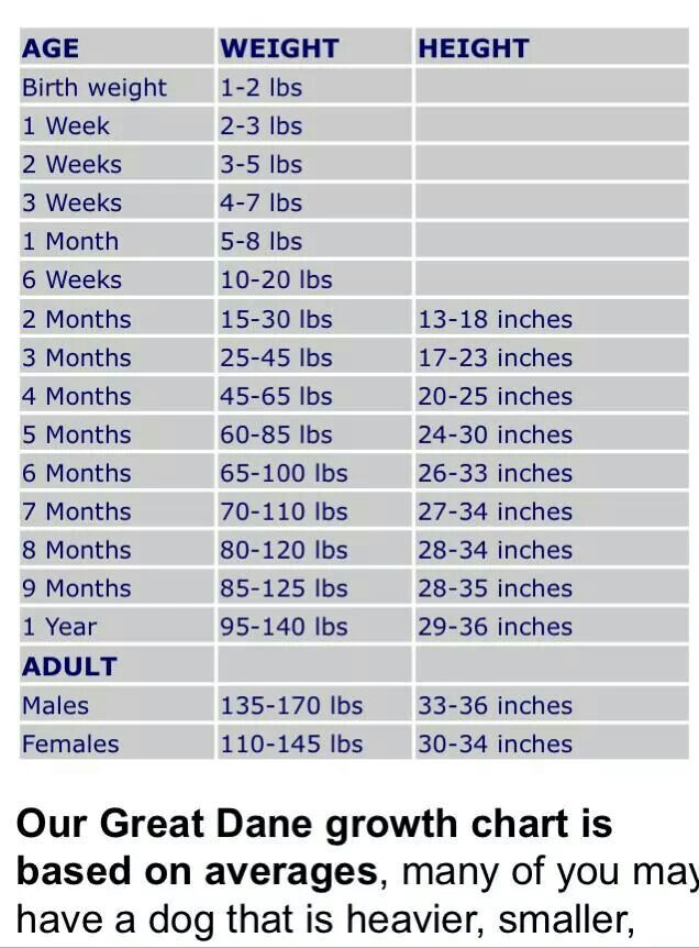Growth Chart Great Dane Growth Chart Great Dane Dogs Great Dane
