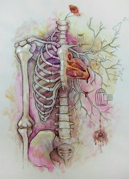 Heart Tree Ribcage Tattoosart Pinterest Heart Tree Anatomy