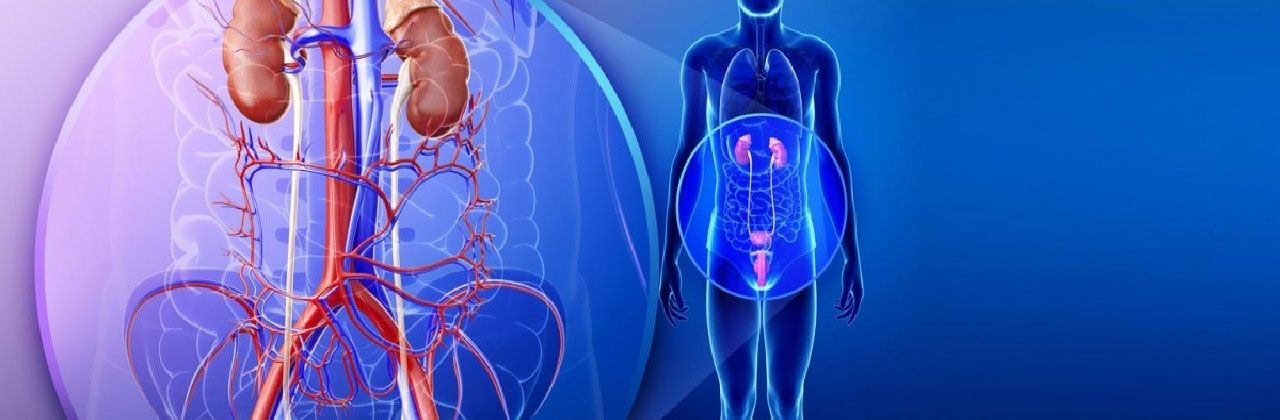 Dr Diyos Hospital Multi Speciality Urology General Physician More In Delhi Lybrate Urologists Urinary Incontinence Overactive Bladder