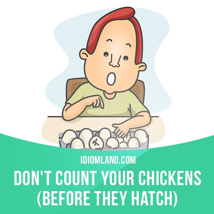 Don T Count Your Chickens Before They Hatch Means Don T Make